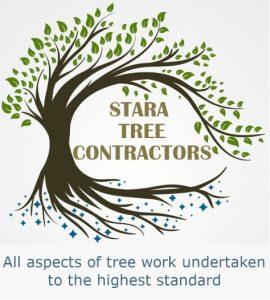 Stara Tree Contractors